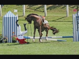 Le cheval et ses chutes