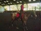 Les filles du cheval