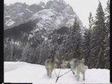 Oumiaks sled dogs dolomites-Alpes Juanary 2006  day 1