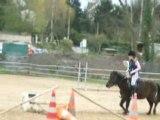 saut des poneys