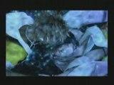 Final Fantasy X l'instant magique