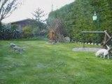 Mes puces dans le jardin