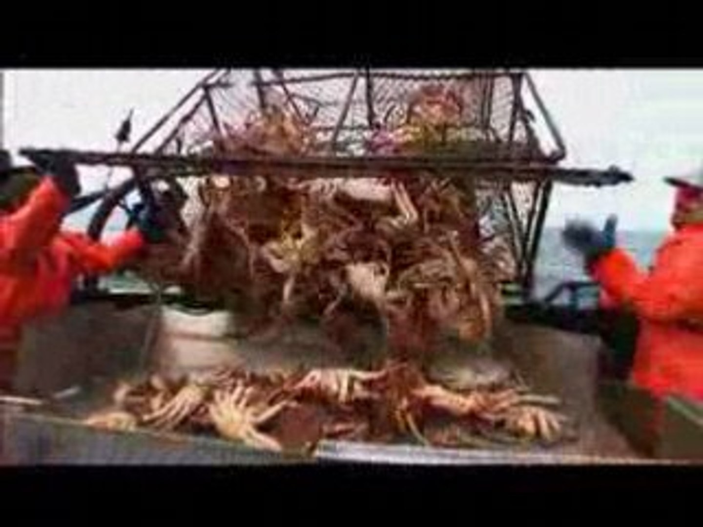 Deadliest Catch - Quick Catch 13