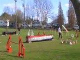 Artéïs préselection edf brives jumping