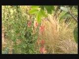 Paysagiste, aménagement extérieur : créer un jardin gourmand, aménager un jardin potager en ville.