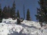 Snowboard, portes du soleil, CHATEL(74)
