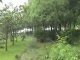 Jardin Barrage des Trois Gorges (Chine)