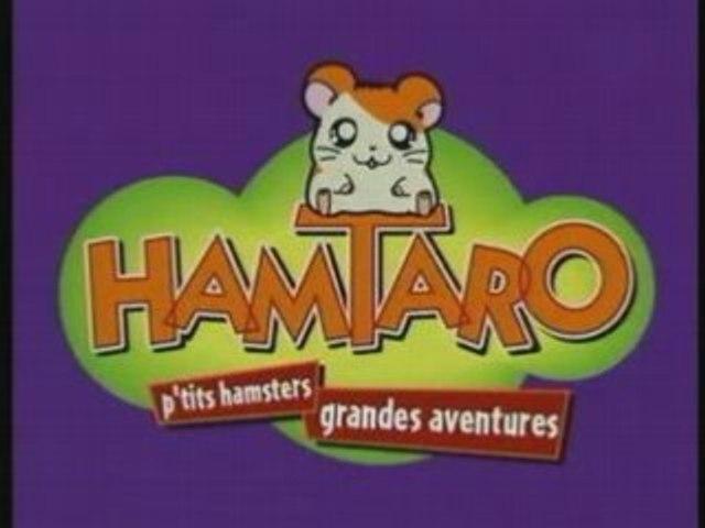 Hamtaro debut