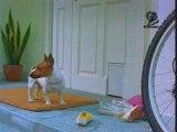 Pub IKEA DOG chien drole funny
