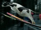 Clip pub, Milch. Lait. Latte. 2002 Saut à ski