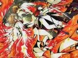 TRC Shaolan & Sakura de PépiitO = D