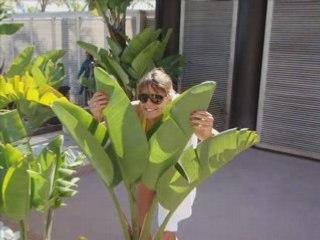Laure Manaudou : vacances à Monaco