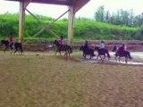 simulation de chutes de poneys