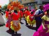 Reine-Muguet-2008-Rambouillet Défilé Chars Fleuris