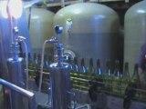 Beaujolais - Du cep à la bouteille