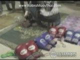 Kobra Muay Thai Boxing & Training Stadium, Koh Phangan, ...