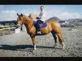 Nathalie et les chevaux