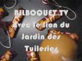Bilboquet TV avec le Lion du Jardin des Tuileries