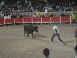 saut de toro Caissargues feria
