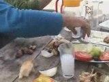 kavrun yaylası-2008 vana açma1 ÇAKUT-www.kavrun.tr.gg