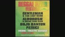 Reggae Fever Festival Vienne 2009 ( Gentleman et Alborosie )
