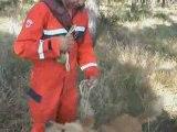 Deprem İçin Köpek Eğitimi Özkan Yeşiloğlu Göndak- Gönen