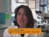 Métiers de la science au CNRS et dans ses UMR - A. Guyon