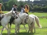 danse de chevaux de danse de chevaux de Camargue