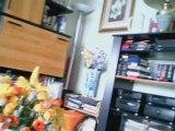 Vidéo webcam Microsoft LifeCam VX-3000 1