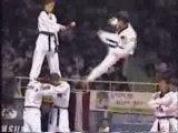 Taekwondo Korean Tigers Team Martial Arts Trickz