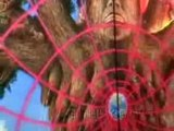 Entheogens and Culture