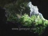 Galapagos Islands travel: Walking the Lava Tube.