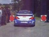 Grosset Janin Peugeot 307 WRC Bozian Rallye Limousin 2008