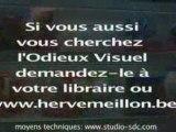 Sortie de L'Odieux Visuel en Librairie - Hervé Meillon