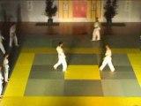 Nuit des Arts Martiaux, tkd Les Clayes 2008