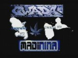 west indies gwada madinina dj mix remix dancehall