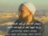 Propagande sioniste pour musulmans stupides