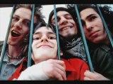 Video Les betteraves-pif paf pouf - les, betteraves, pif, pa