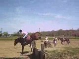 cross a cheval