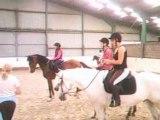 Saut équitation