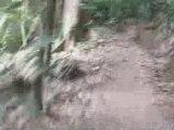 Cairns VTT sans VTT sur le Mont Whitfield