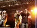 reggae dancehall secret story
