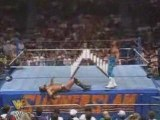 wwe Shawn Michaels vs Razor Ramon-Ladder Match WWF Title 2