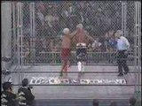 WCW Superstar Series - The Nature Boy Ric Flair 6 6