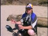 Surf Kayak (Part 1)