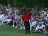 Tiger Woods and some of his great golf shots