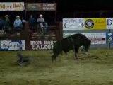 rodeo yellowstone : sur les taureaux