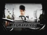 TERMANOLOGY - How we rock (feat Bun B) (prod dj premier)