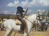 stage d'equitation à Barcelone parmi les chevaux andalous