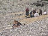 Balade estivale au bord de l'eau à VEULETTES sur MER